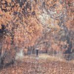 Depresja sezonowa – jak sobie z nią poradzić?